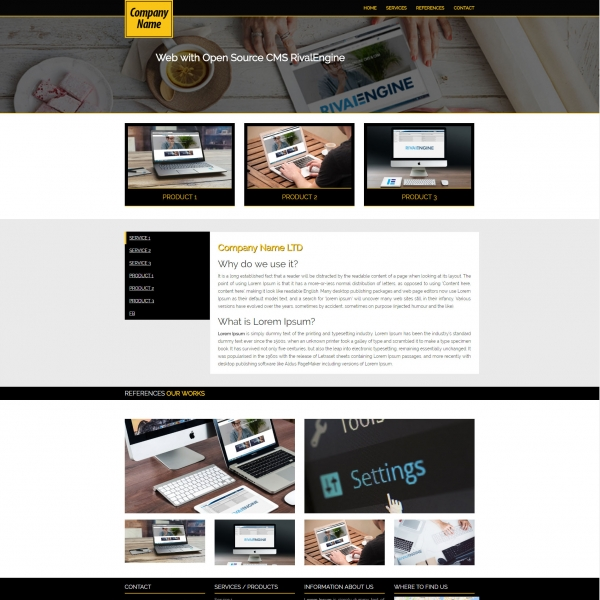 Business Company Web